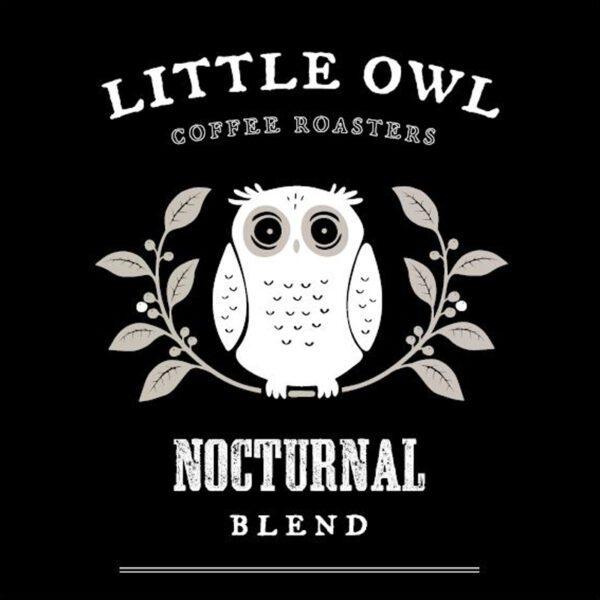 Little Owl Full Moon 2